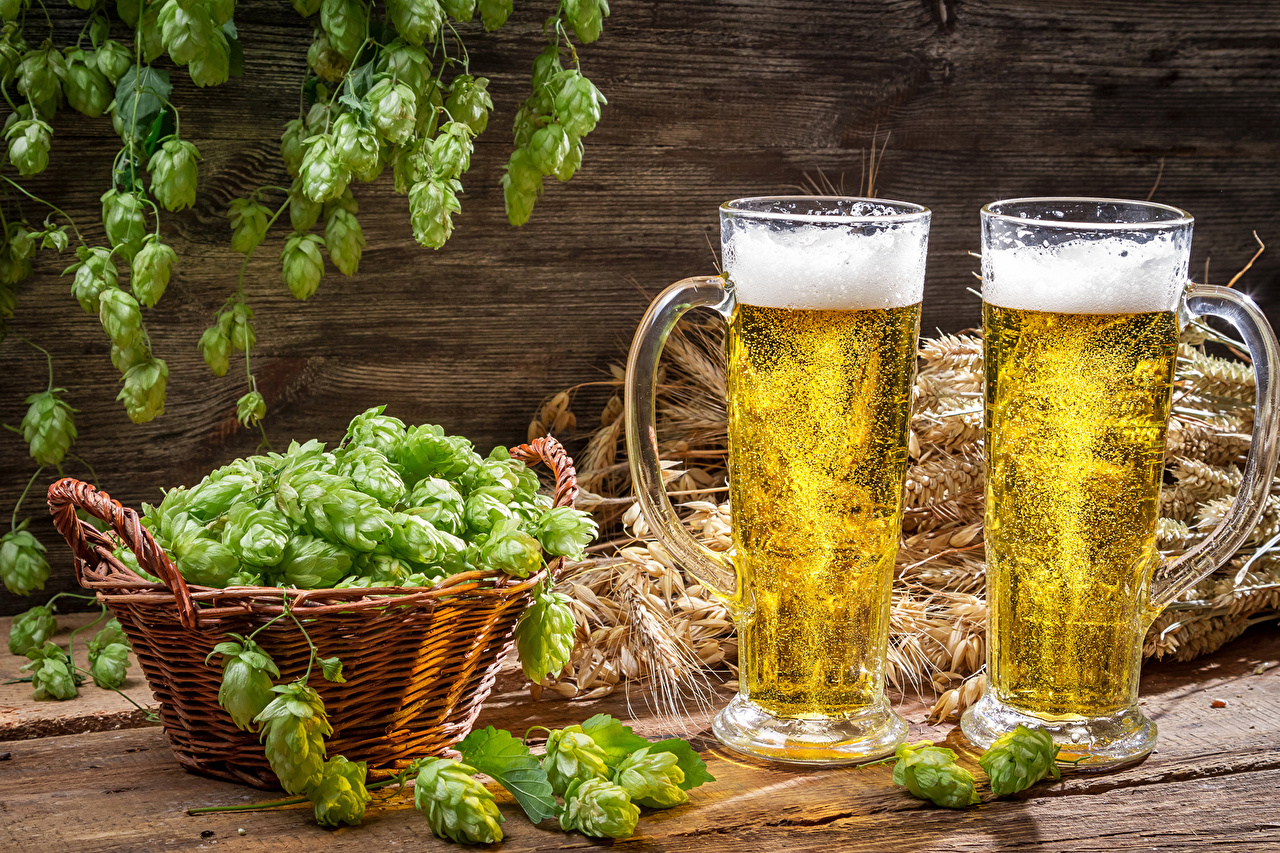 Savo alaus gamyba